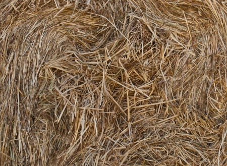 Close up of straw background texture photo