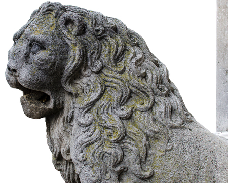 parole: detail column-bearing lion carved into the stone of the Cathedral of Altamura. Italy