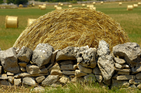 dry stone: Close up sheaf of straw on a dry stone wall in the countryside of Puglia