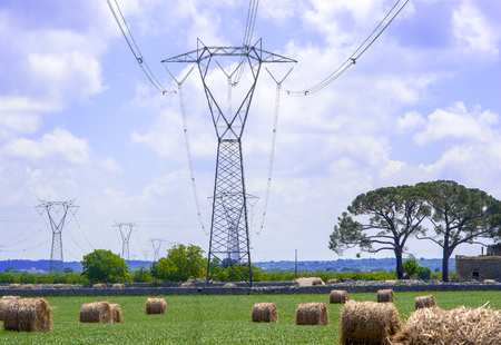 isolator: electricity pylons in the countryside apulia. Italy