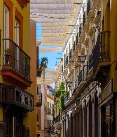 canopies: Canopies provide shade in the summer on the road Seville, Spain
