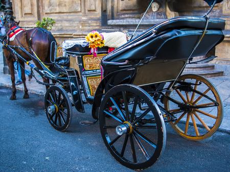 horse and carriage in the Quattro Canti, one of the octagonal four sides of Baroque square in Palermo - Italy