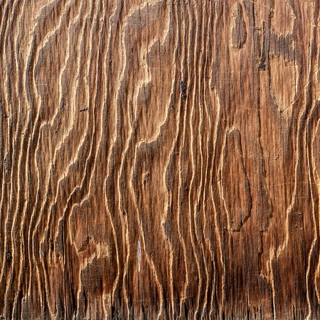 wood pattern: wood material texture artistic pattern