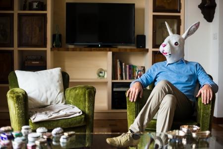 elegant business multitasking rabbit mask man using devices at home Stockfoto