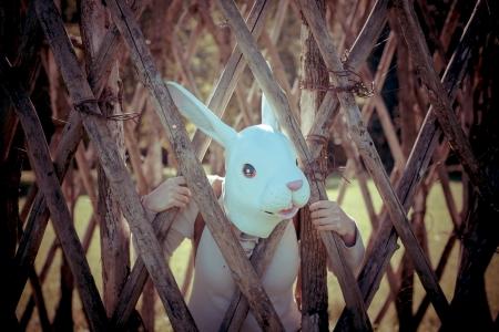 rabbit cage: giovane hipster, maschera di coniglio donna in gabbia autunno Archivio Fotografico