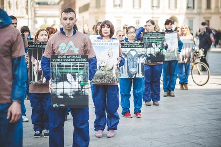2014 年 4 月 13 日にミラノ, イタリア - 4 月 13 日: Essere Animali 抗議: 動物の活動家のグループの権利協会イースター前に市内中心部で本当に死んだ羊共