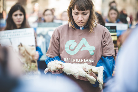 activists: MILAN, ITALY - APRIL 13: Essere Animali protest on April, 13 2014: a group of activists of animal rights association Essere Animali performed with real dead lambs in city center before easter Editorial
