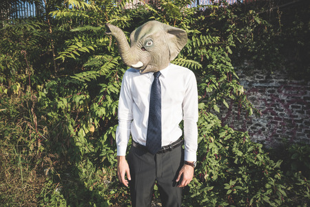 elephant mask young handsome elegant blonde model man in the city photo