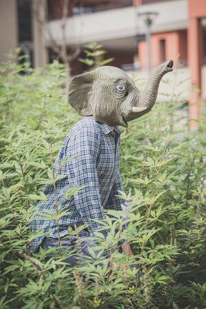 absurd: elephant mask absurd man in the plants