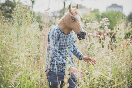 horse mask absurd man in the grass Stock Photo