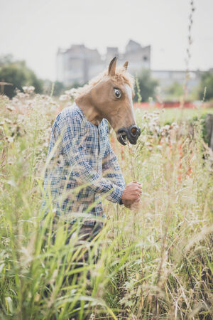 absurd: horse mask absurd man in the grass Stock Photo
