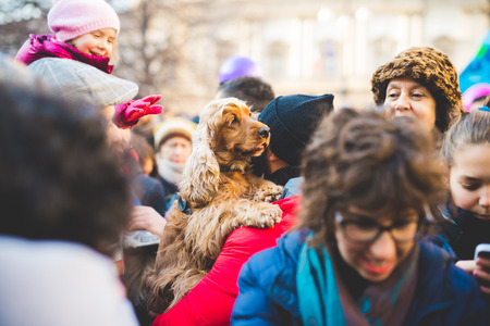 manifestation: MILAN, ITALY - JANUARY 23: unmarried couples manifestation in Milan on January 23, 2016. A man carrying his dog with little baby trying to stroke it