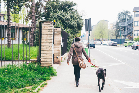 Back view of young caucasian short hair woman walking in the city with her dog - friendship, companion, strolling concept Stockfoto