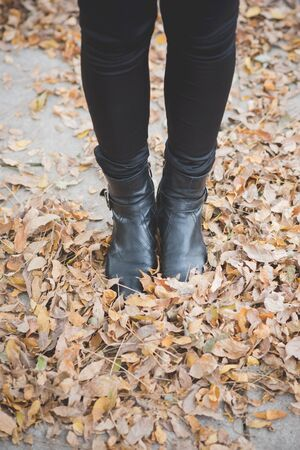Close-up view of the stylish and elegant leather womans shoes in the leaves and wood background in casual autumn style.