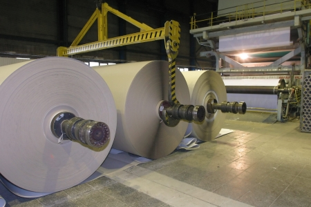 mill: Roll of paper in a paper factory