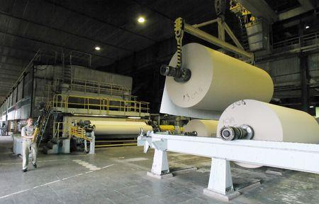 Rouleau de papier dans une usine de papier