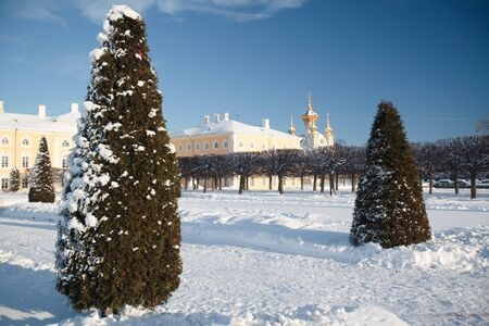 peterhof: Russian winter. Peterhof. Petrodvorets. Upper Gardens.
