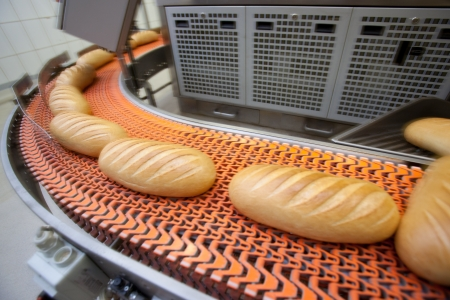 factory automation: Bread bakery food factory. White bread. loaf