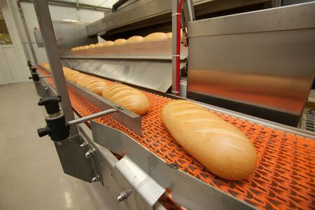 food factory: Bread bakery food factory. White bread. loaf