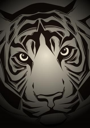 siberian tiger: Muzzle tiger illustration  Illustration