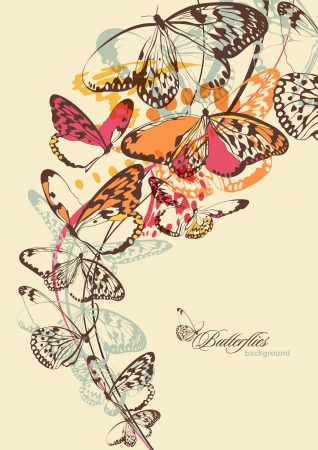 Butterflies  Vector illustration  Vector