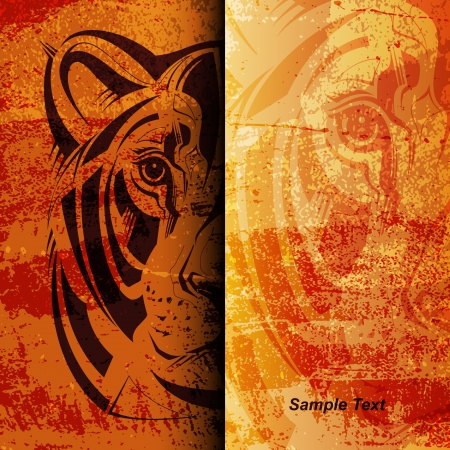 Muzzle of a lioness on grange background  Vector