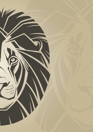 Lion  Vector illustration  Vector