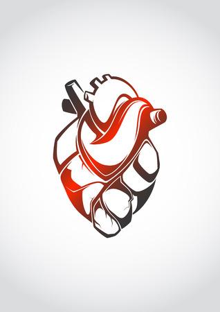 Abstract anatomical heart  Vector