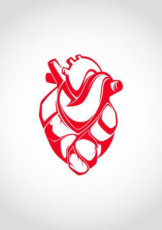fight disease: Human Heart  Illustration