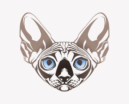 Sphinx cat  Close-up portrait  Vector