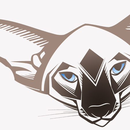 bare skinned: Oriental cat, Close-up portrait  Illustration