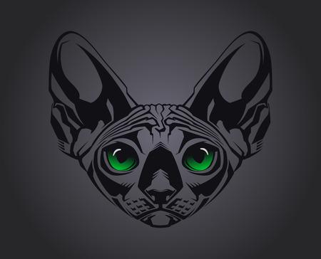 esfinge: Close-up retrato de gato sin pelo Esfinge sobre fondo negro Ilustraci�n vectorial Vectores