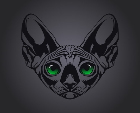 Close-up portrait of hairless Sphinx cat on black background  Vector illustration Illustration