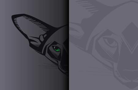 bare skinned: Close-up portrait of Oriental cat on black background  Vector illustration