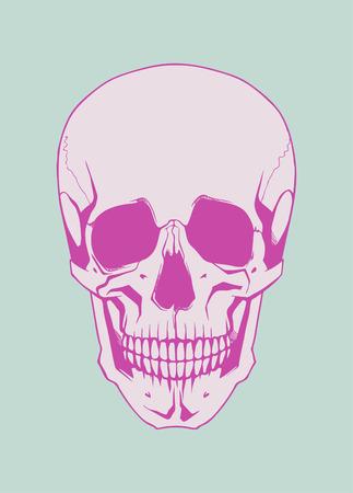whitern: Vector Skull artwork
