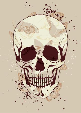 skull and crossed bones: Cr�neo de la manera con mariposas alrededor Vectores