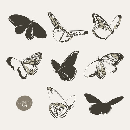 wallpaperrn: Set of butterflies silhouettes Illustration