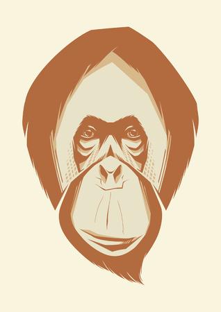 orangutan: Vector illustration of monkey. Orangutan