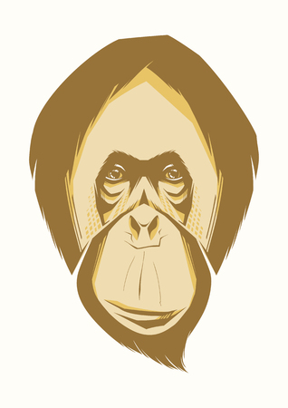 gazing: Portrait of funny monkey