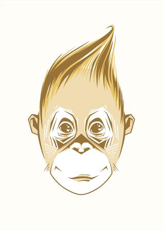 gazing: Portrait of funny monkey
