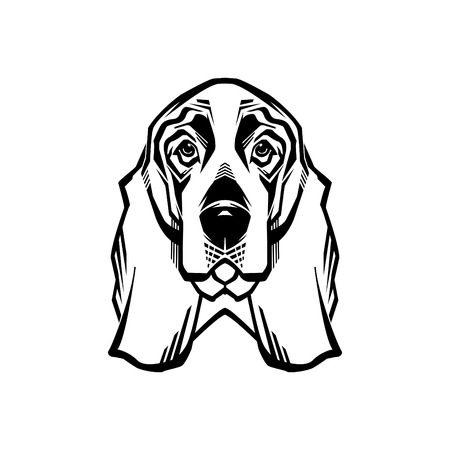 Vector Illustrated portrait of Basset Hound