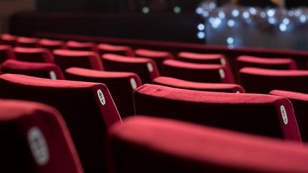 빨간색 의자와 빈 극장입니다. 배면도. 스톡 콘텐츠