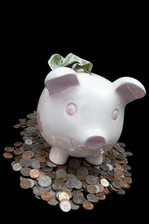 Traditional piggy bank standing on top of money, as if to guard or protect it.