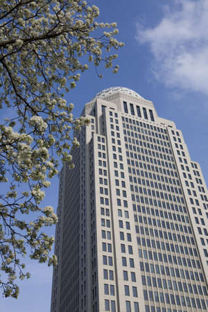 High-rise building framed by a bradford pear tree in full bloom. Blossoms surround this corporate office building.