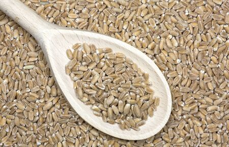 spelled: Spelt grains with wooden spoon