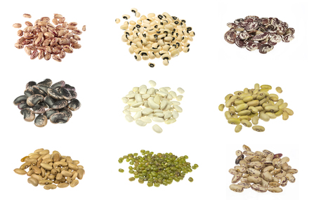 Beans collection on the white background