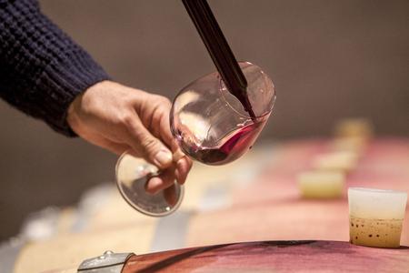 Sommelier sampling red wine from barrel