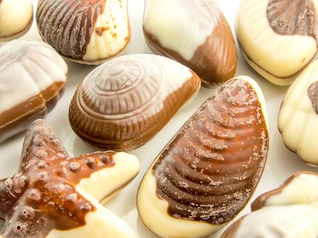 sea creatures: assorted sea creatures chocolate shapes