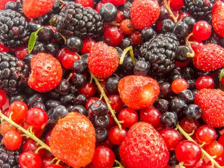 montón de frutas del bosque maduras y otras bayas surtidos