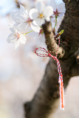 cherry flower blossom and martisor martenitsa string